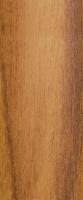 Přechodová lišta Cezar samolepící 30mm 0,9m ořech zlatý
